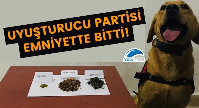 Biga'da uyuşturucu partisi emniyette bitti!