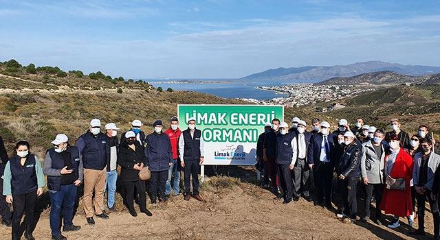 Limak Enerji, Balıkesir'i ağaçlandıracak