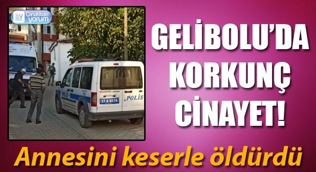 Gelibolu'da korkunç cinayet: Annesini keserle öldürdü!