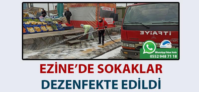 Ezine'de sokaklar dezenfekte edildi