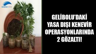 Gelibolu'daki yasa dışı kenevir operasyonlarında 2 gözaltı!