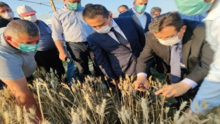 Vali Aktaş'tan dolu mağduru çiftçilere destek sözü
