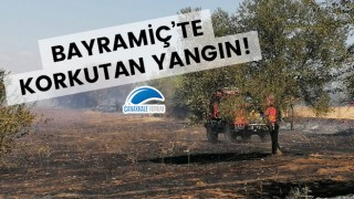 Bayramiç'te korkutan yangın!