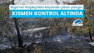 Biga'daki yangın kısmen kontrol altında