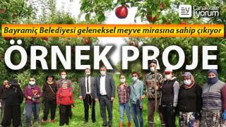 Bayramiç Belediyesi geleneksel meyve mirasına sahip çıkıyor