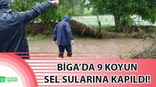 Biga'da 9 koyun sel sularına kapıldı!