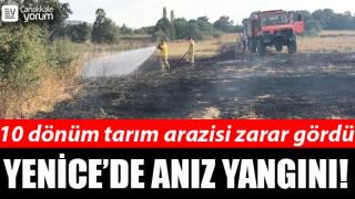 Yenice'de anız yangını: 10 dönüm tarım arazisi zarar gördü!