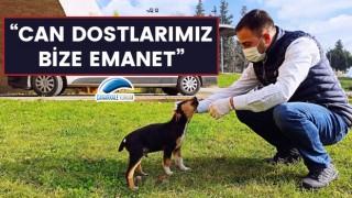 """Başkan Erdoğan: """"Can dostlarımız bize emanet"""""""