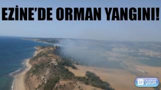Ezine'de orman yangını!