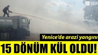 Yenice'de arazi yangını: 15 dönüm kül oldu!